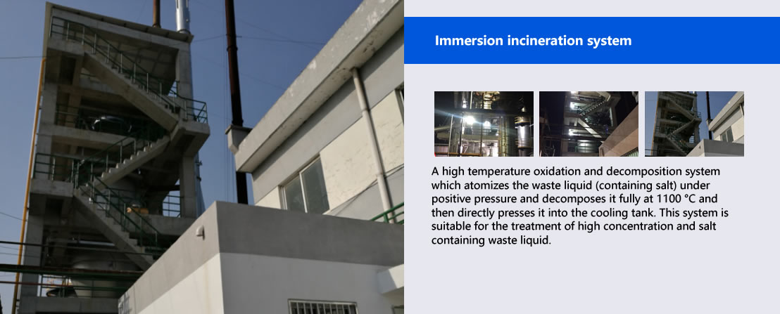 Immersion incineration system